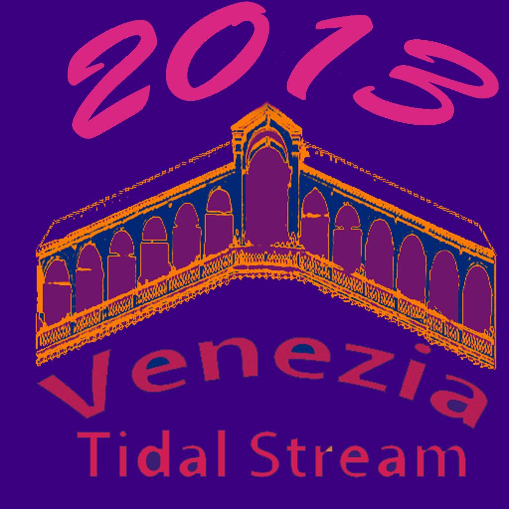 venezia2013big
